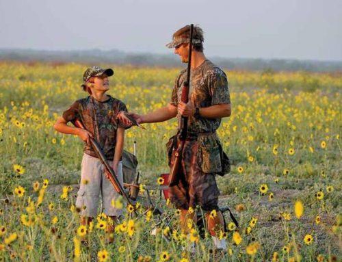 Weekend Dove Hunt In Coleman,TX